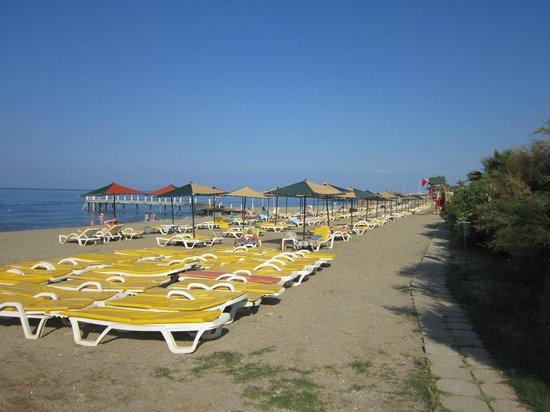 M.C. Park Beach Resort: 10