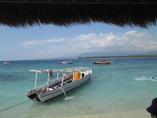 Tom picture of manta dive gili air gili air tripadvisor - Manta dive gili air resort ...