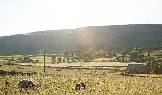 Dale House Farm: View of the farm