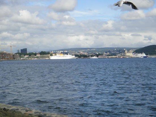 Viking Ship Museum : Осло фьорд