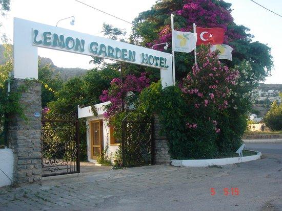 Lemon Garden Otel: LEMON GARDEN