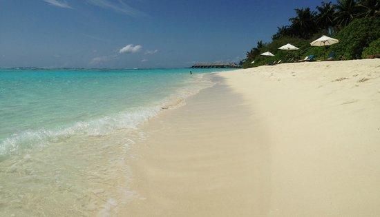 Velassaru Maldives: spiaggia lato bungalow deluxe