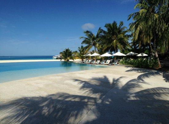 Velassaru Maldives: piscina 1