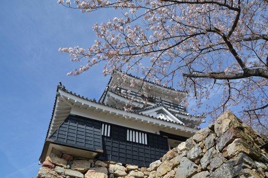 Hamamatsu Castle : 浜松城天守閣
