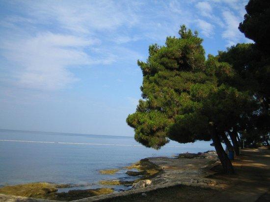 Hotel Laguna Mediteran: по дороге к Поречу