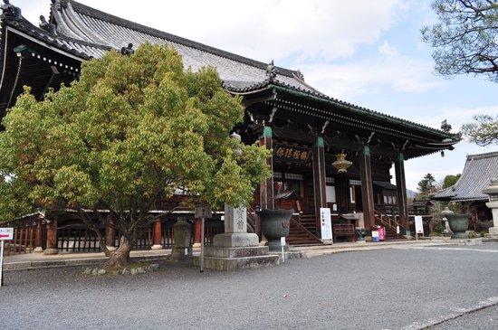 Seiryoji Temple: 清涼寺