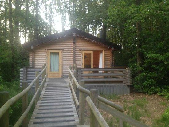 Alpine Grove Log Cabins: Woodpecker log cabin