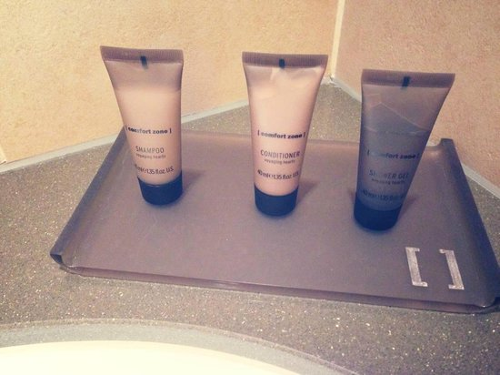 Crowne Plaza London - Battersea: products