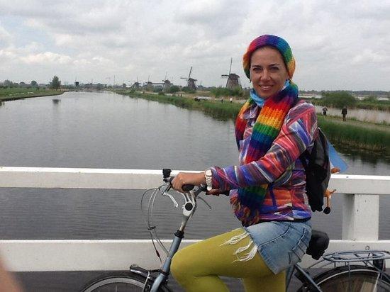 Mühlenanlagen in Kinderdijk-Elshout: kinderdijk