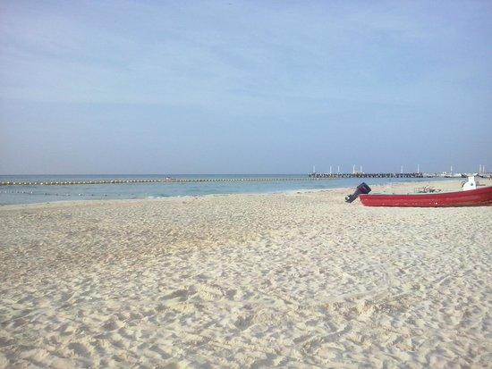 Hotel All Riviera: una bella playa