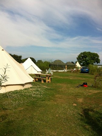 Daisy Cottage Campsite & Retreat: View of campsite