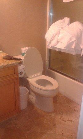Orbit One Vacation Villas : Other bathroom