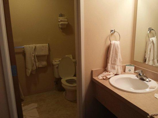 Grande Denali Lodge : banheiro