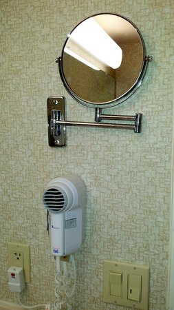 Wingate by Wyndham Vineland: Mirror and hairdryer