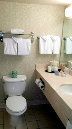 Wingate by Wyndham Vineland: Bathroom area