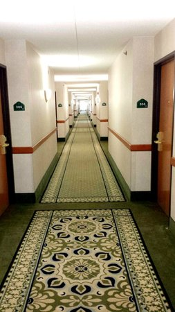 Wingate by Wyndham Vineland: Hallway