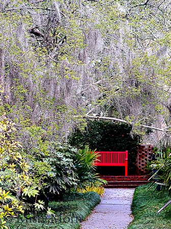 Brookgreen Gardens: A Spot of Red