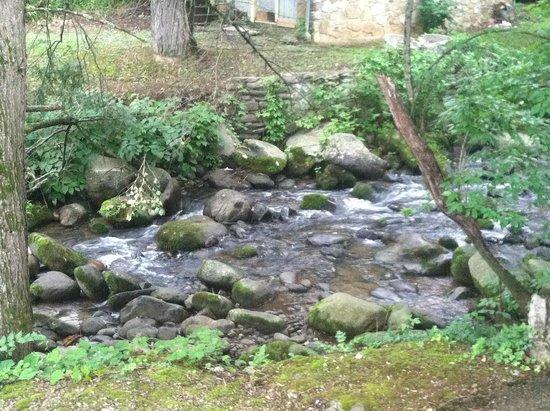 Brookside Resort: creek behind hotel