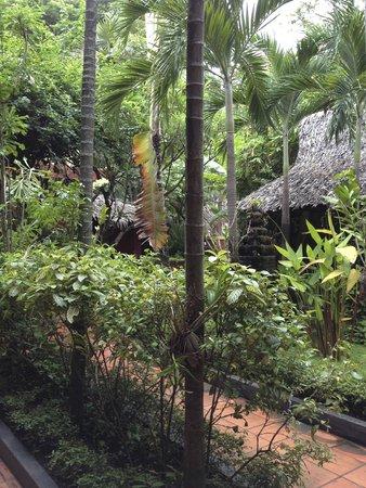 Bopha Siem Reap Boutique Hotel : Nice surrounding
