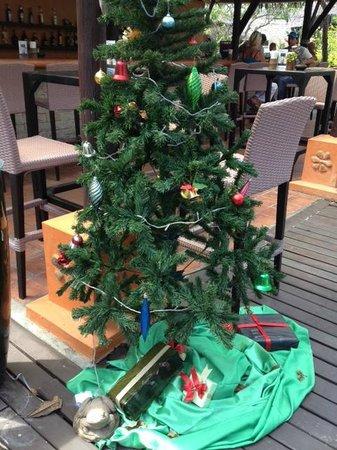 Phi Phi Island Village Beach Resort : Christmas tree