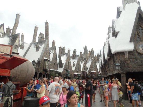 The Wizarding World of Harry Potter: Casas de Hogsmeade