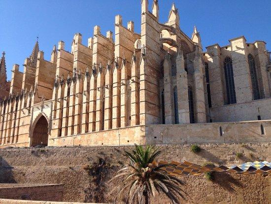 Palma Catedral Le Seu: Catedral