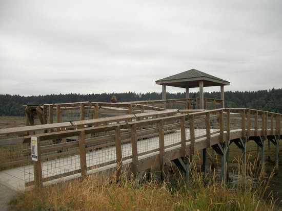 Nisqually National Wildlife Refuge : This was the start of our long walk.