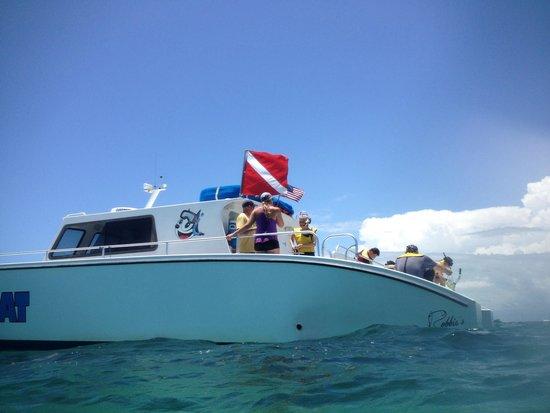 Happy Cat Snorkel Boat