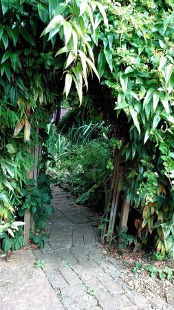 Pilgrims B&B: entrance to the back garden