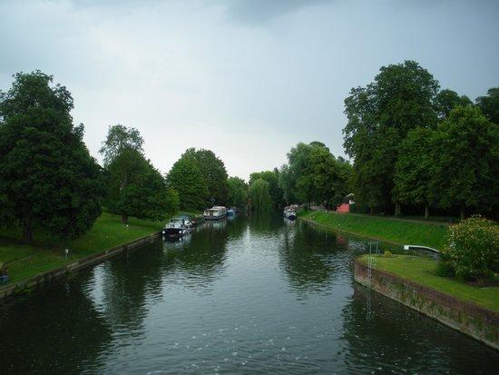 The River Cam : Fiume Cam