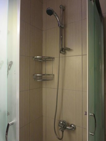 Rose Apartments: Shower