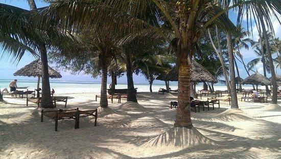 Dream of Zanzibar: Het mooie strand met de ligbedden