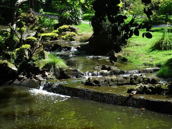 Parc Oriental de Maulevrier : petite cascade d'eau