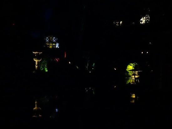 Parc Oriental de Maulevrier : ballade nocturne