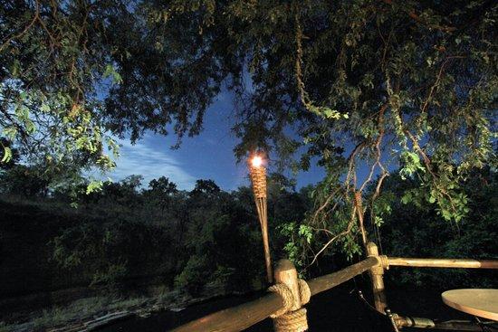 Selous Serena Camp: Selous Camp at Night