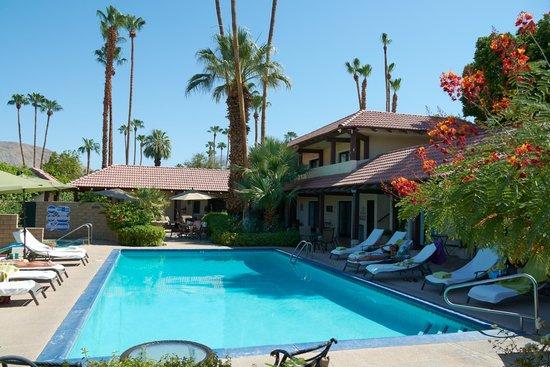 La Maison Hotel: Pool tagsüber