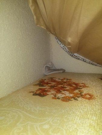 Villa Del Sol: 2312 sock of a stranger