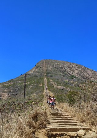 Koko Crater Railway Trail: Don't look up
