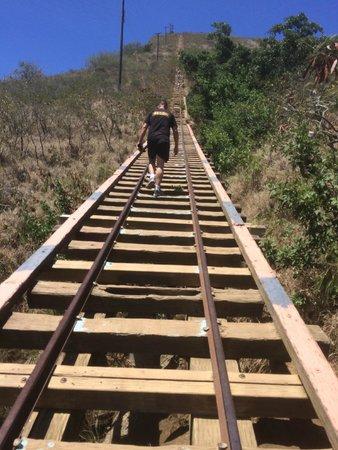 Koko Crater Railway Trail: Start of the track