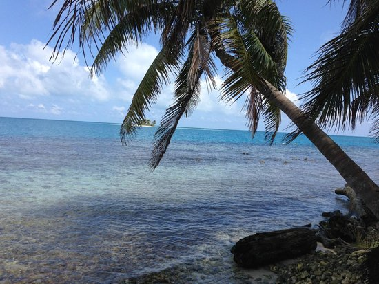 Pirate's Point Adventure Tours : Silk Caye