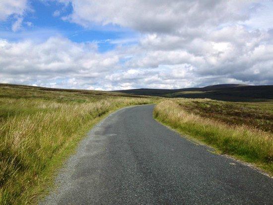 Sally Gap road