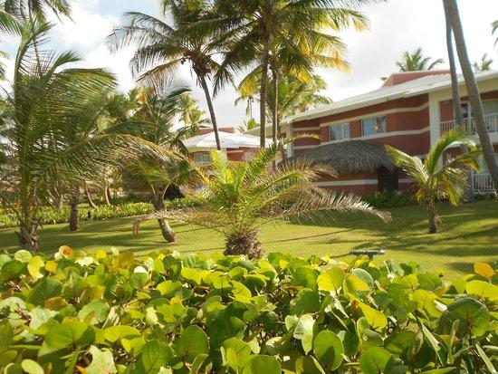 Grand Palladium Bávaro Suites Resort & Spa: .