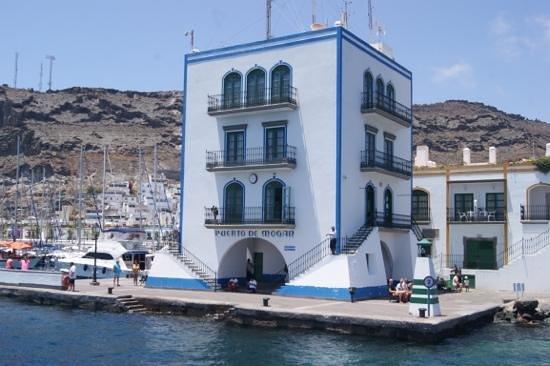 Líneas Blue Bird: arrival at Puerto Mogan