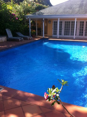 Polkerris Bed and Breakfast: Pool view
