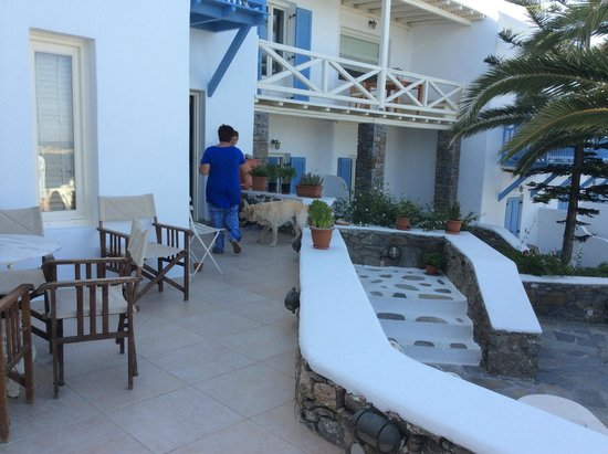 Vencia Hotel: Neri out for his morning walk