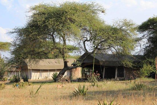 Mapito Tented Camp Serengeti: Camp