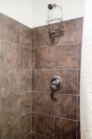Lowell Inn: Shower Head is placed way too high