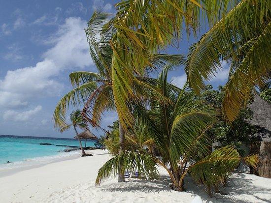 Thulhagiri Island Resort: 9
