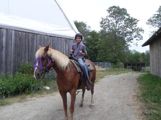 Honora Bay Riding Stables: 1st time rider