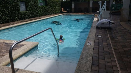 Courtyard by Marriott Fort Lauderdale Airport & Cruise Port : Pool